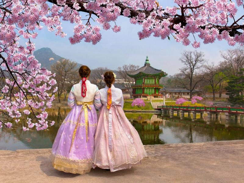 Đi tour Hàn Quốc giá bao nhiêu? Có nên đi tour Hàn Quốc dịp Tết âm không?