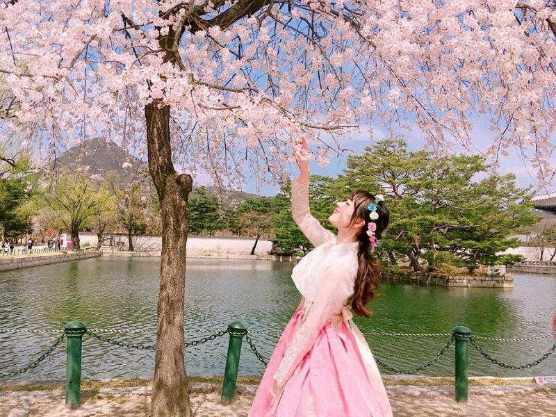 Tour Hàn Quốc dành cho fan Kpop - đặt tour du lịch Hàn Quốc xem concert thần tượng cần lưu ý những gì?