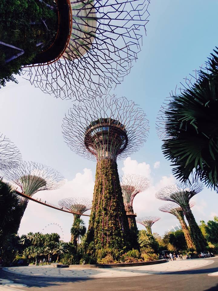 Ghé thăm Singapore