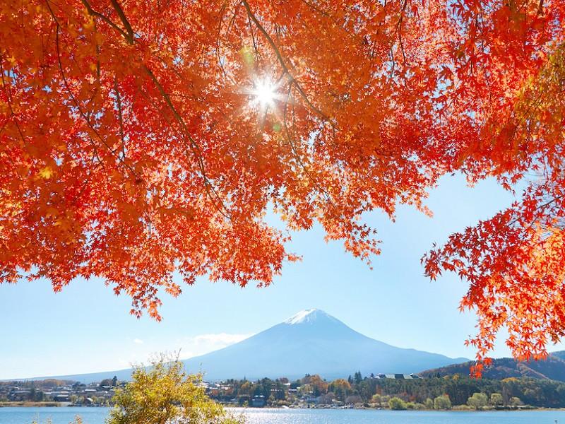 Đặt tour du lịch Nhật Bản tháng 10 khởi hành từ TPHCM