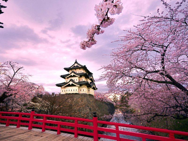 Đặt tour du lịch Nhật Bản tháng 12 khởi hành từ TPHCM