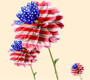 Đến Hoa Kỳ để Thăm Thân Nhân? Tư vấn miễn phí thủ tục xin và gia hạn visa!