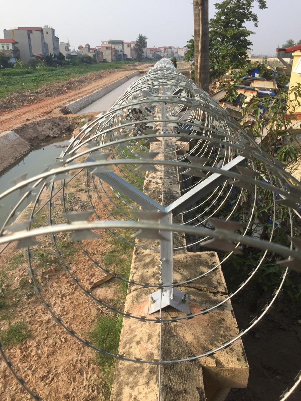 Hình thức hàng rào dây thép gai