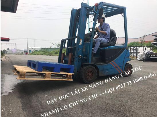 Đào tạo chứng chỉ nghề lái xe nâng hàng tại Bình Dương - Đồng Nai