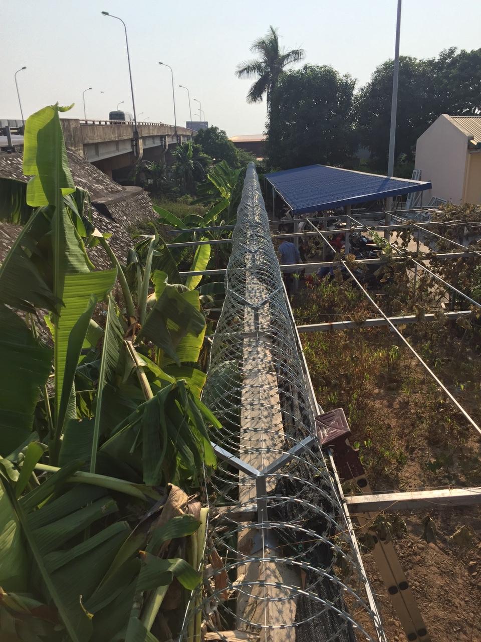 Hình thức hàng rào dây thép gai phổ biến