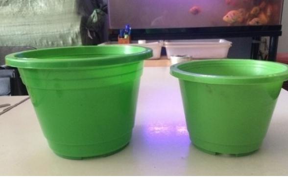 Hợp tác tìm đại lý chậu nhựa xanh