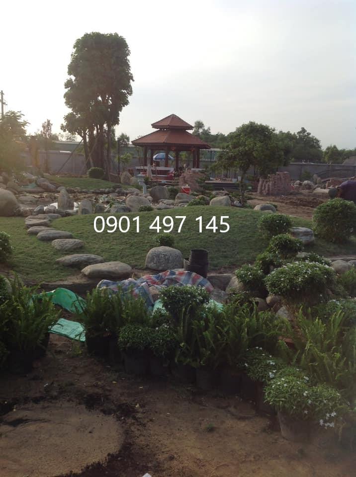 Thi công sân vườn, tiểu cảnh tại Bình Chánh, TP HCM