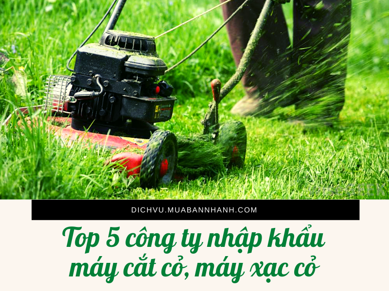 Top 5 công ty nhập khẩu máy cắt cỏ, máy xạc cỏ từ Nhật Bản, Thái Lan, Trung Quốc về TPHCM
