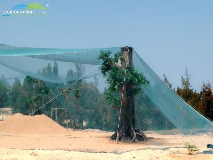Thiết Kế Thi Công Căng Lưới Vườn Chim