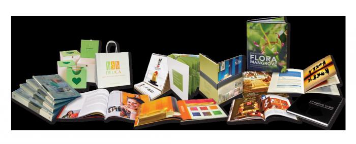 In catalog, tờ rơi, túi hộp, bao thư… uy tín, chất lượng