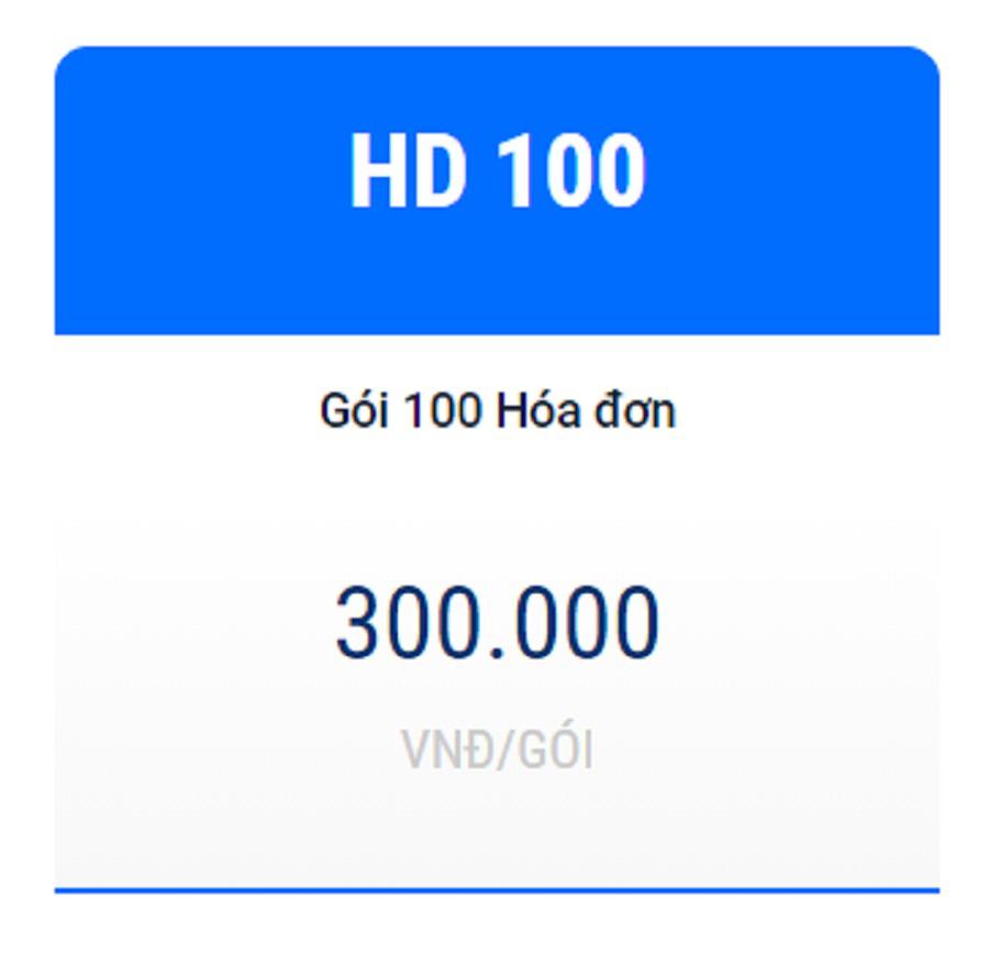 Hóa đơn điện tử chỉ 300.000đ - HD100