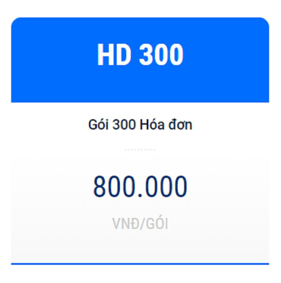 Hóa đơn điện tử HD300